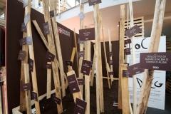 Salone del Gusto 2010 - Foto 8